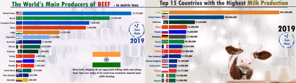 Крупнейшие производители говядины и молока 2019